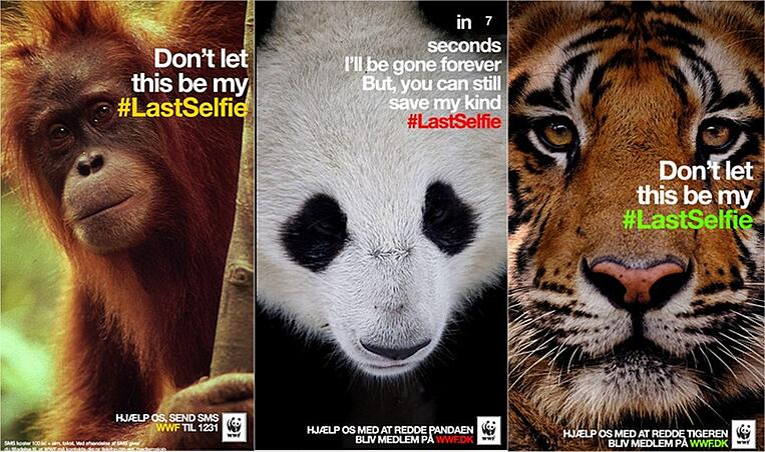 social media campaign WWF