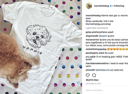Marnie The Dog promoting merchandise