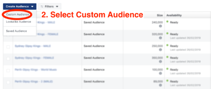 blur custom audience-1